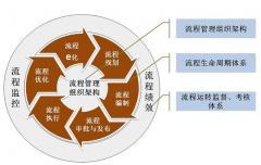 企业管理组织的建立 - 组织架构