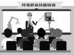 国务院印发《关于推行终身职业技能培训制度的意见》附原文